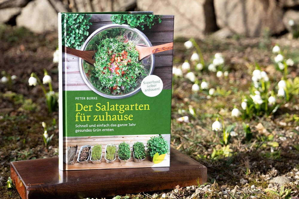 Salatgarten