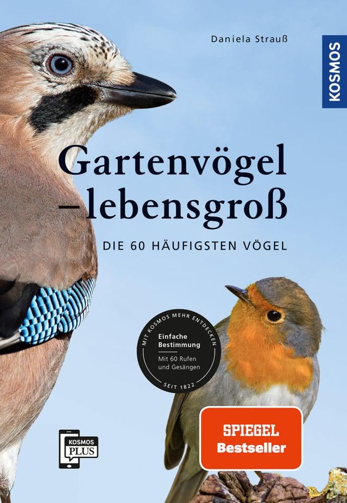 Gartenvögel - lebensgroß
